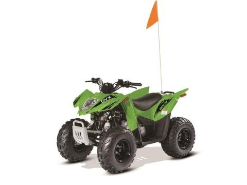 2017 Arctic Cat DVX 90 in Baldwin, Michigan