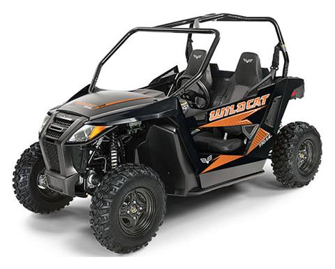 2019 Arctic Cat Wildcat Trail in Hillsborough, New Hampshire