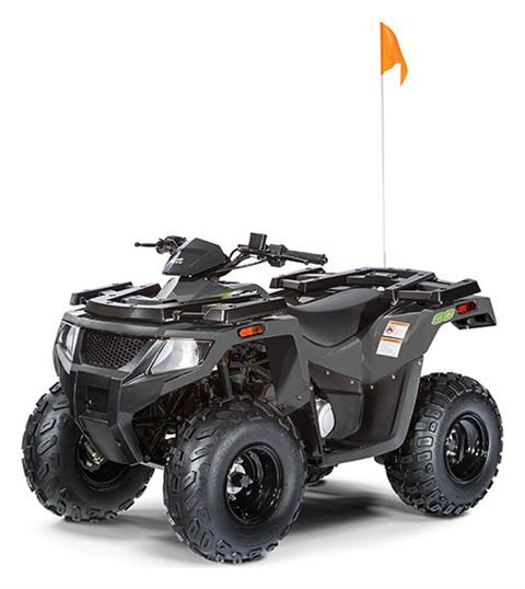 2020 Arctic Cat Alterra 90 in Harrisburg, Illinois
