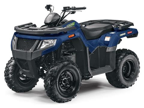 2021 Arctic Cat Alterra 300 in Warrenton, Oregon - Photo 1