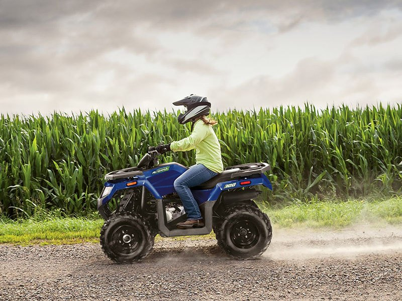 2021 Arctic Cat Alterra 300 in Rexburg, Idaho