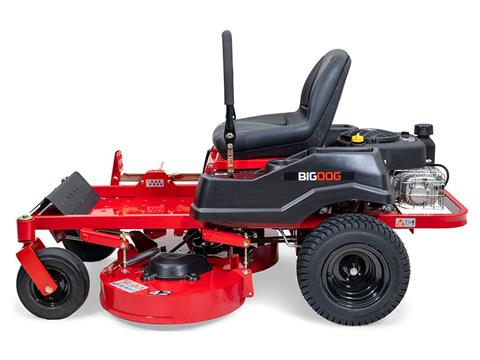 2021 Big Dog Mowers Rex 42 in. Briggs & Stratton 10.5 hp in West Monroe, Louisiana - Photo 2