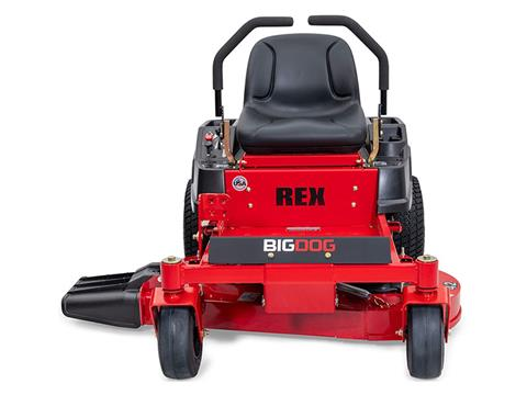 2021 Big Dog Mowers Rex 42 in. Briggs & Stratton 10.5 hp in West Monroe, Louisiana - Photo 5