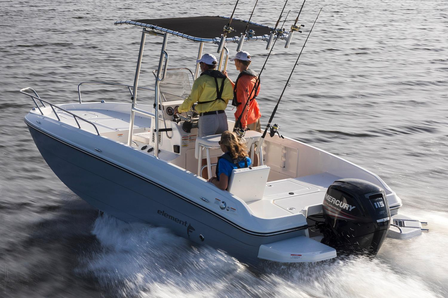 2019 Bayliner Element F21 in Lagrange, Georgia