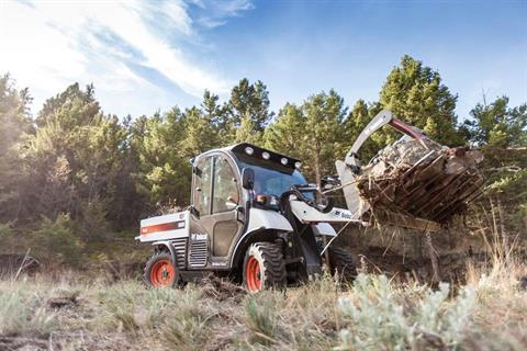 2017 Bobcat 32 in. Grapple, GP in Fond Du Lac, Wisconsin - Photo 3