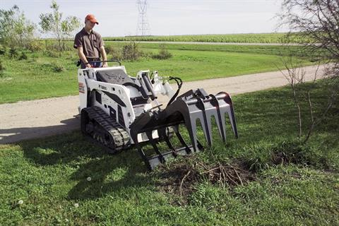 2017 Bobcat 48 in. Root Grapple in Fond Du Lac, Wisconsin - Photo 2