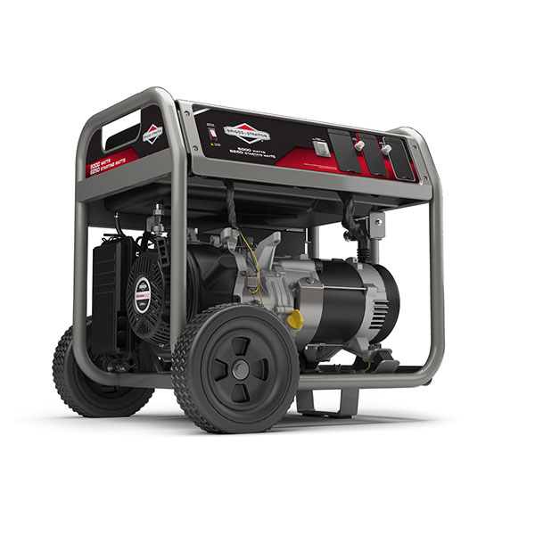 2017 Briggs & Stratton 030677 in Glasgow, Kentucky