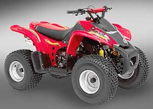 2004 Can-Am DS 50™ in Speculator, New York