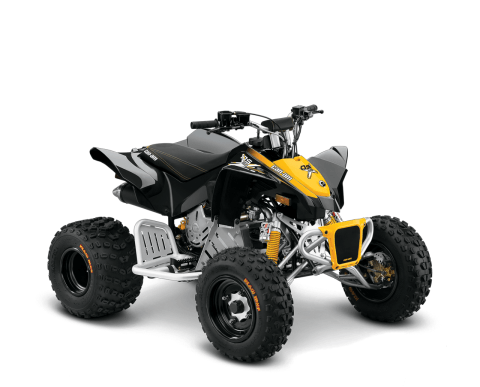 2016 Can-Am DS 90  X in Roscoe, Illinois