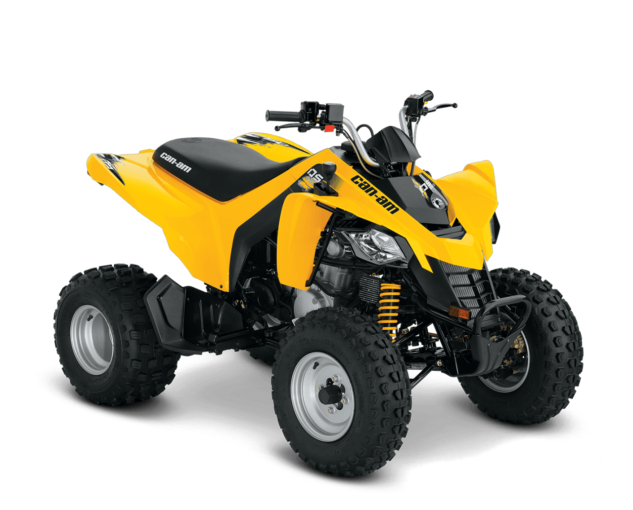 2016 Can-Am DS 250 in Tyrone, Pennsylvania
