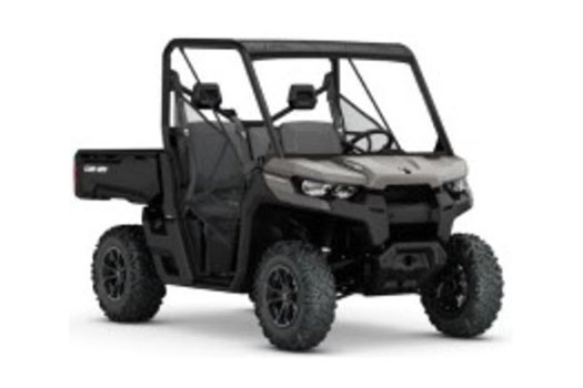2017 Can-Am™ Defender DPS HD10 1
