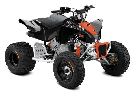 2018 Can-Am DS 90 X in Boonville, New York