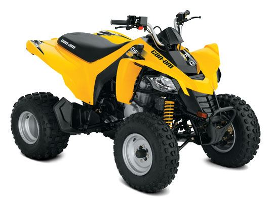 2018 Can-Am™ DS 250 1