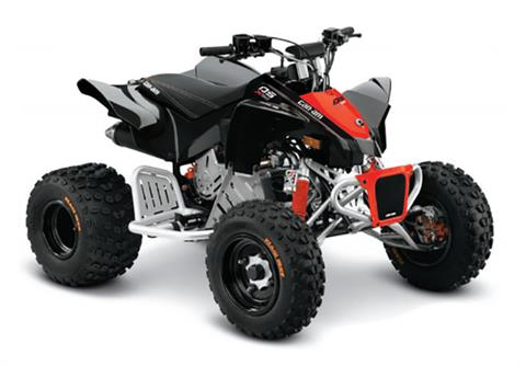 2019 Can-Am DS 90 X in Lakeport, California