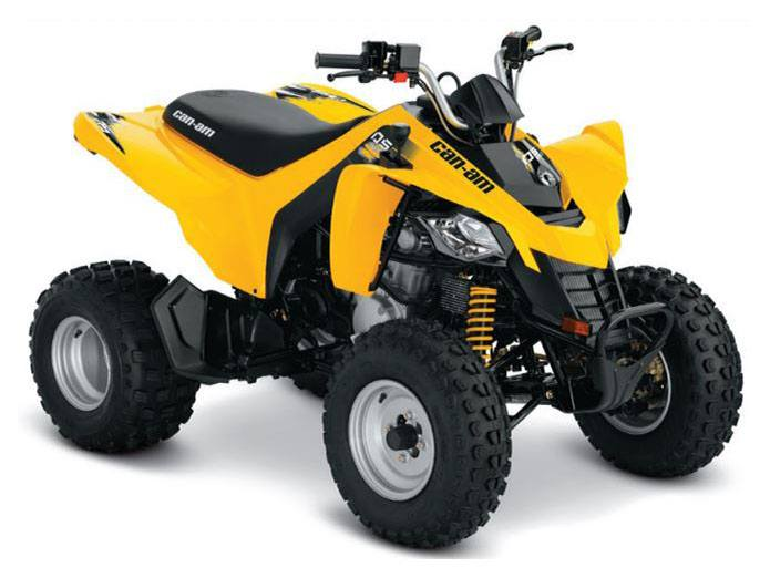 2019 Can-Am DS 250 in Hillman, Michigan