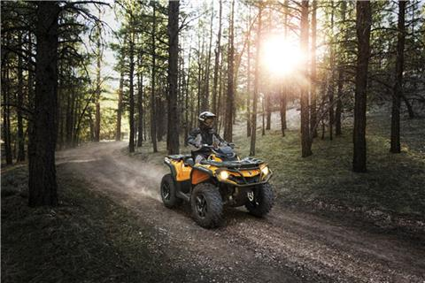 2019 Can-Am Outlander DPS 450 in Baldwin, Michigan
