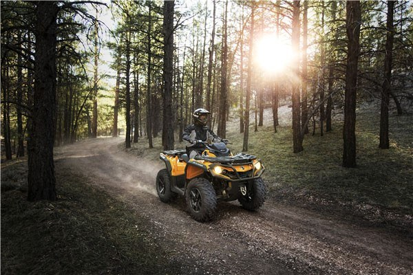 2019 Can-Am Outlander DPS 450 in Colebrook, New Hampshire