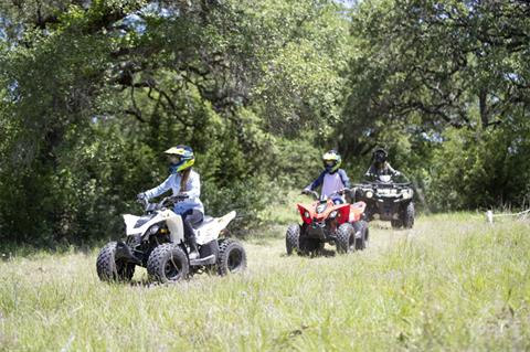 2020 Can-Am DS 70 in Garden City, Kansas - Photo 2