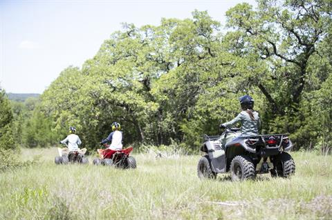 2020 Can-Am DS 70 in Longview, Texas - Photo 4
