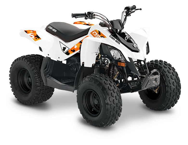 2020 Can-Am DS 90 in Hollister, California - Photo 2