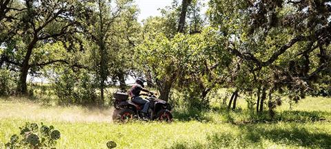2020 Can-Am Renegade 570 in Santa Rosa, California - Photo 6