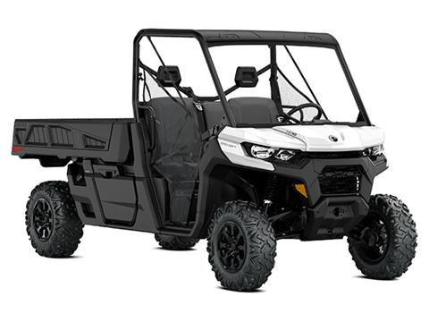 2021 Can-Am Defender Pro DPS HD10 in Woodruff, Wisconsin