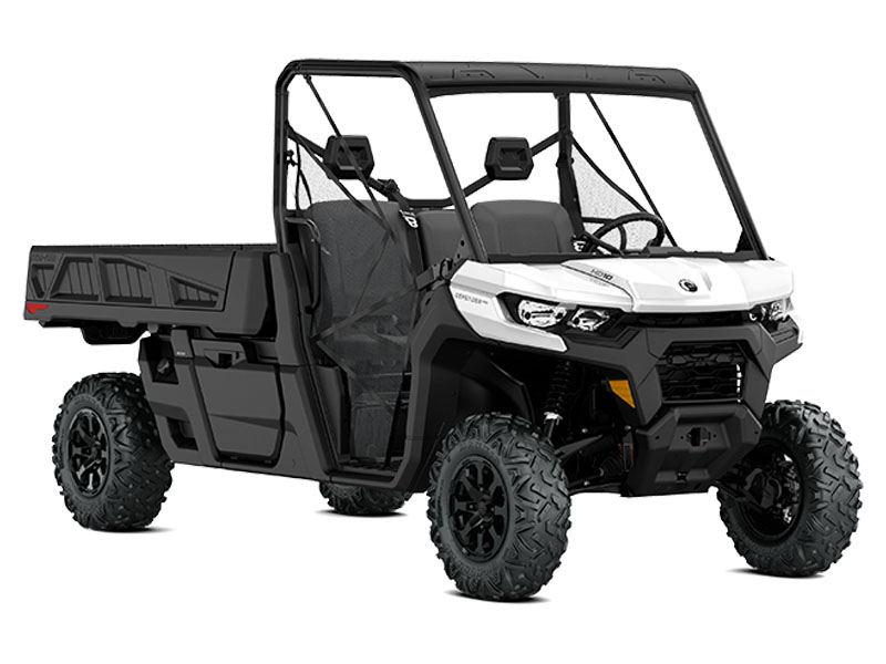 2021 Can-Am Defender Pro DPS HD10 in Hillman, Michigan - Photo 1