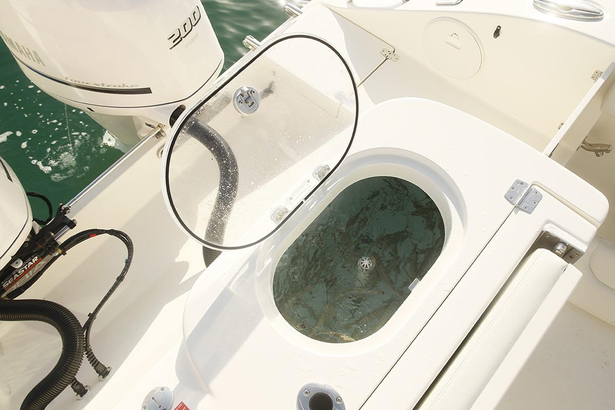 2019 Cobia 277 Center Console in Chesapeake, Virginia - Photo 28