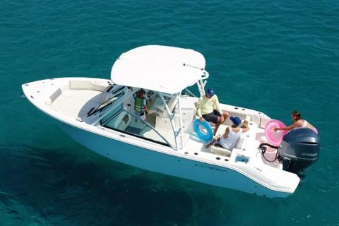 2021 Cobia 240 Dual Console in Chesapeake, Virginia - Photo 1