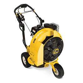 2018 Cub Cadet CB 2900 Gas Blower in Hillman, Michigan