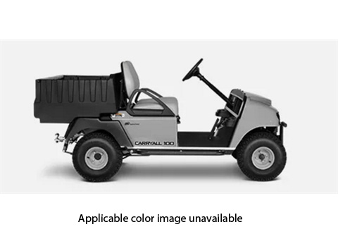 2018 Club Car Carryall 100 Gasoline in Gaylord, Michigan
