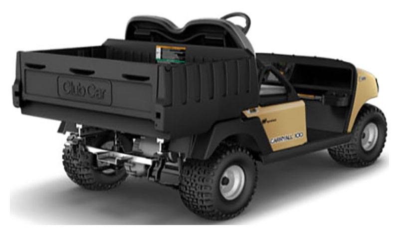 2019 Club Car Carryall 100 Electric in Otsego, Minnesota