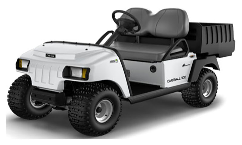 2019 Club Car Carryall 100 Gasoline in Lakeland, Florida - Photo 1