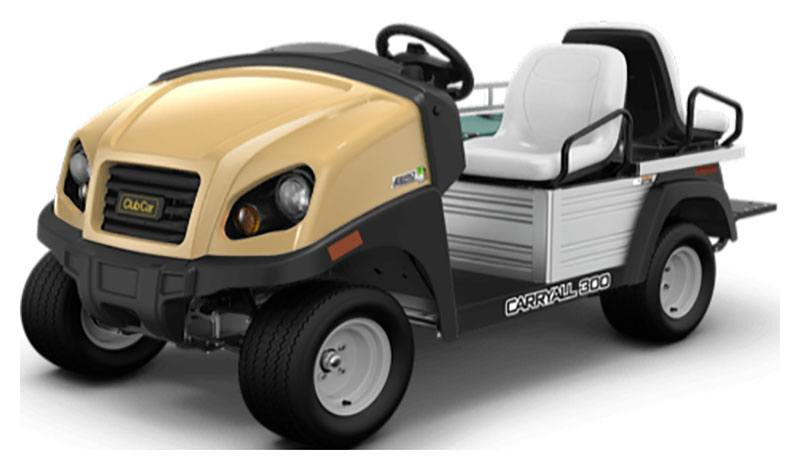 2019 Club Car Carryall 300 Ambulance Electric in Lakeland, Florida