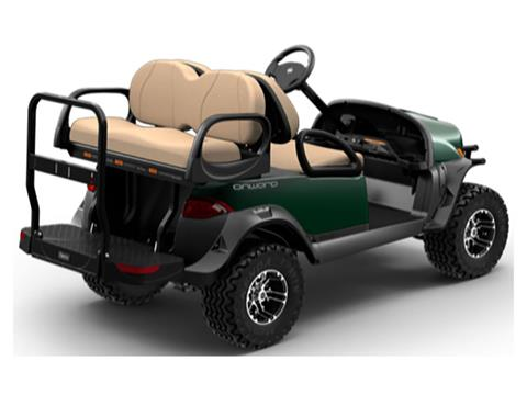 2019 Club Car Onward Lifted 4 Passenger Gasoline in Aitkin, Minnesota