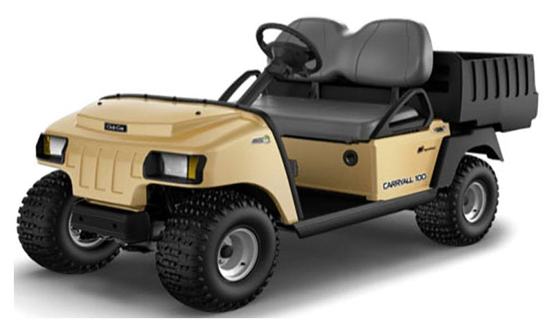 2020 Club Car Carryall 100 Electric in Commerce, Michigan - Photo 1