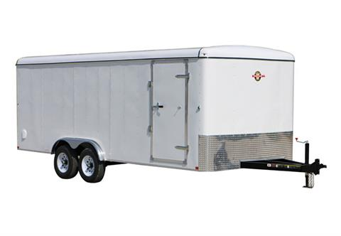 2019 Carry-On Trailers 8X16CGR in Thornville, Ohio