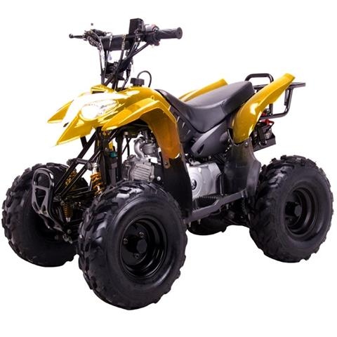 2016 Coolster ATV-3050B in Norfolk, Virginia