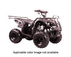 2017 Coolster ATV-3050D in Virginia Beach, Virginia