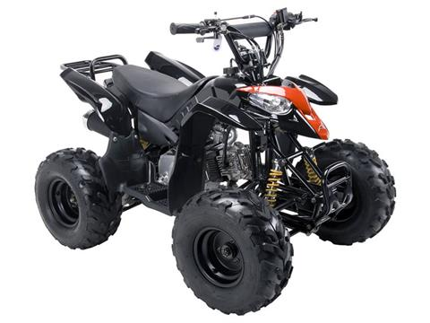 2018 Coolster ATV-3050B in Forty Fort, Pennsylvania