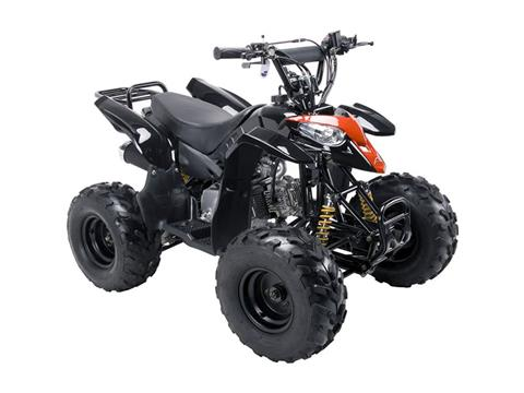 2018 Coolster ATV-3050B in Howard Lake, Minnesota