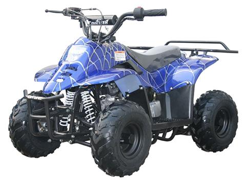 2018 Coolster ATV-3050C in Howard Lake, Minnesota