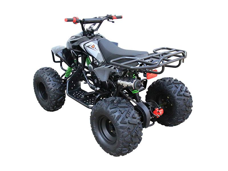2018 Coolster ATV-3125A2 in Howard Lake, Minnesota
