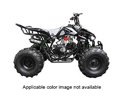2018 Coolster ATV-3125CX-2 in Howard Lake, Minnesota