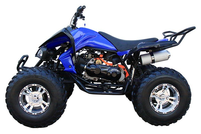 2018 Coolster ATV-3175S in Virginia Beach, Virginia - Photo 3