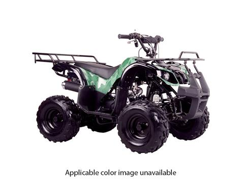 2018 Coolster ATV-3050D in Chula Vista, California