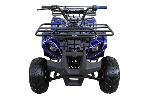 2018 Coolster ATV-3125R in Chula Vista, California