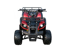 2018 Coolster ATV-3125R in Howard Lake, Minnesota