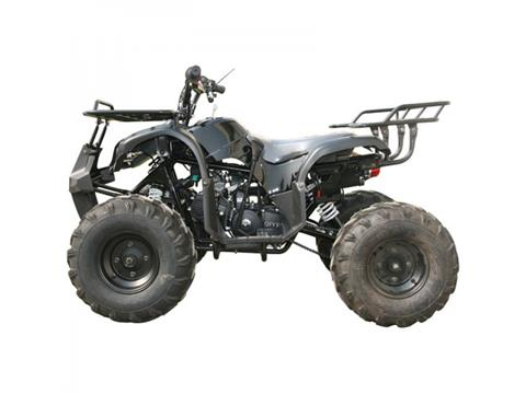 2018 Coolster ATV-3125XR8-S in Howard Lake, Minnesota