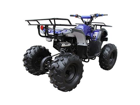 2018 Coolster ATV-3125XR8-U-S (ULTIMATE) in Howard Lake, Minnesota